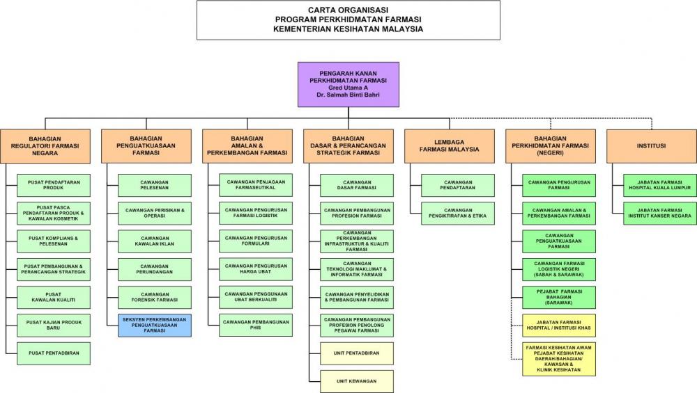 Carta organisasi Program Perkhidmatan Farmasi KKM