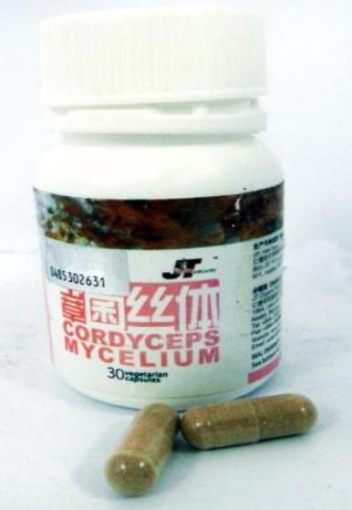 JT Cordyceps Mycelium