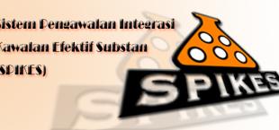 sistem pengawalan intergrasi kawalan efektif substan